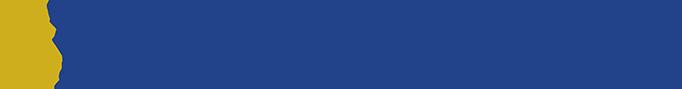 Silver Springs Logo